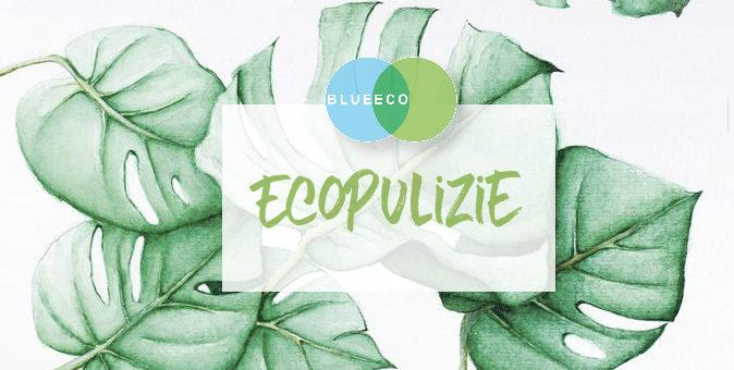 spruzzino multiuso fai da te: facile, ecologico e conveniente