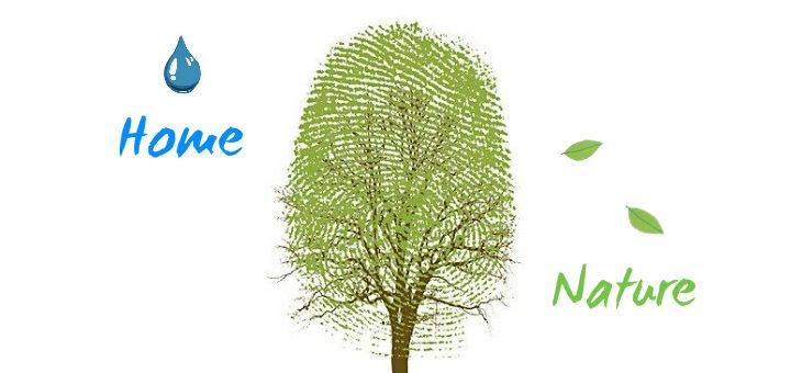 La mia casa ecologica: un accordo tra famiglia e natura