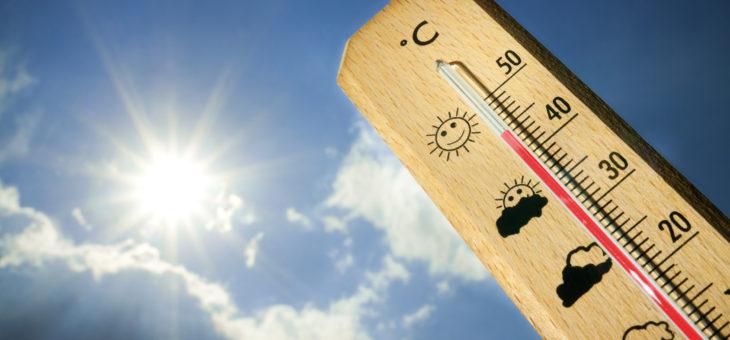 Batteri e caldo: tutte le precauzioni per una casa sana